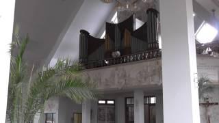 Max Reger - Toccata d-moll op.59