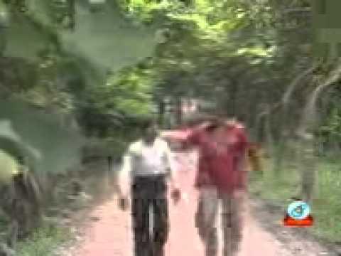 Xxx Mp4 DAB KHAOA Funy Teacher With Student 3gp Bangla Video 3gp Sex