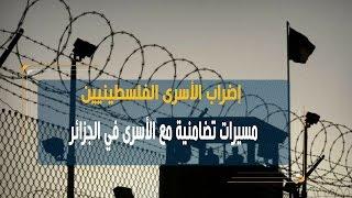 سفارة فلسطين بالجزائر تنظم وقفة إضاءة بالشموع تضامنا مع الأسرى