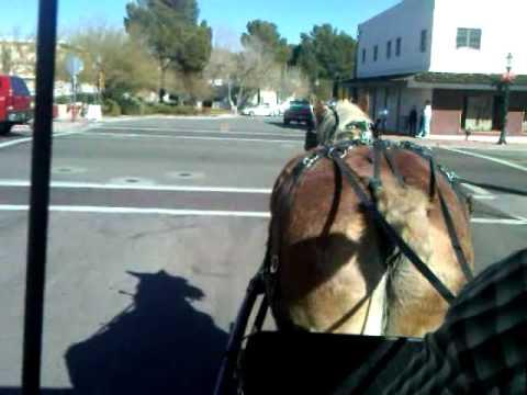Xxx Mp4 Lazy D Rockin P Ranch LLC Carriage Horse Rides 3GP 3gp Sex