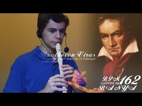 Beethoven Virus on the recorder Raphael