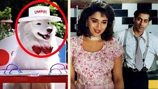 Do You Remember Tuffy From 'Hum Aapke Hain Kaun'?