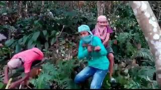 The young crew...movie filim mp4..reang