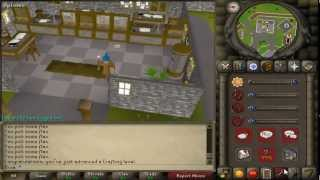 Back! Mice* - RS07 - DAY 15!!!! Fri - Progression Video - The Brua