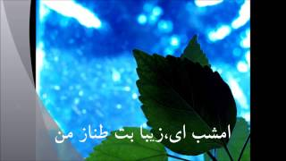 Jawad Tabesh جواد تابش