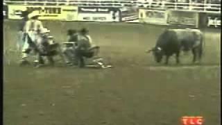 Cowboy poker - a Funny video