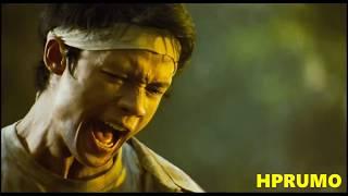 Born To Fight Tribute (in HD) / The Best Fight Scenes