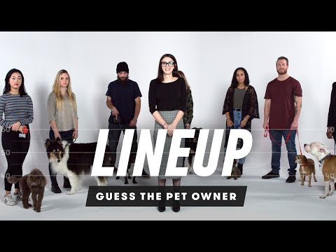 Xxx Mp4 Match The Dog To Their Owner Lineup Cut 3gp Sex