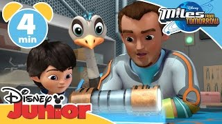 Miles From Tomorrow | Mission To The Sun | Disney Junior UK