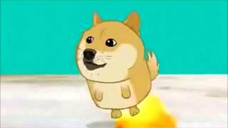 Doge Adventure 1 Hours