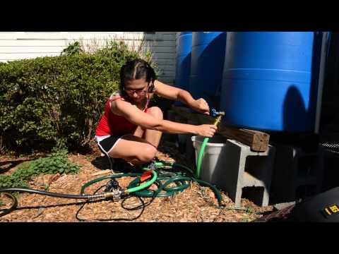 Using Rain Barrels to Irrigate Your Garden