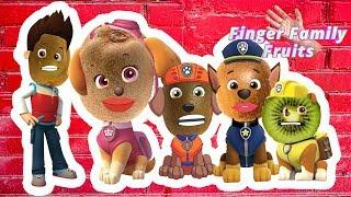 Paw Patrol Finger Family Kiwi Wrong Heads Learning Fruit Names Finger Family