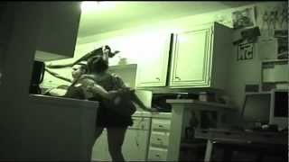 WTF # 3 - two drunk girls fight in my apartment