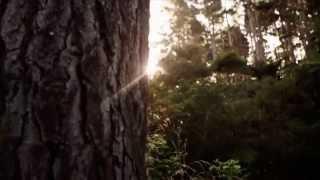 Vincent Selvakumar Song | Jebame | Tamil Song