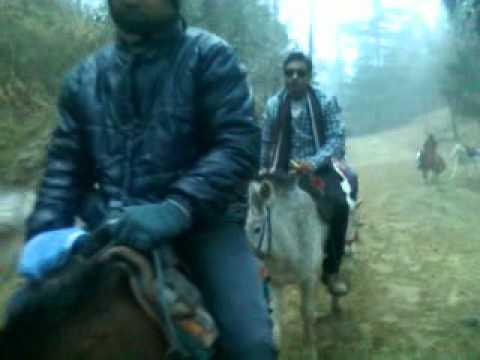 Xxx Mp4 Kufri Horse Riding 3gp 3gp Sex