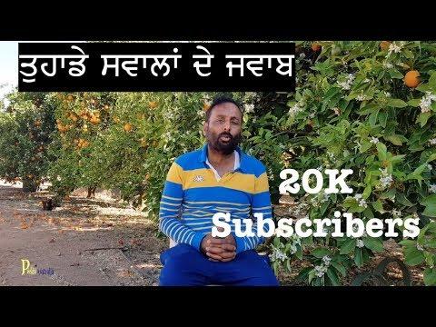 Xxx Mp4 Pendu Australia 20K Subscribers Answers Of Your Questions Lekha Jokha 3gp Sex