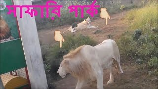 বঙ্গবন্ধু সাফারী পার্ক-Bangabandhu Safari Park-Gazipur-Al Beruni Hall Picnic। আল বেরুনী হল পিকনিক