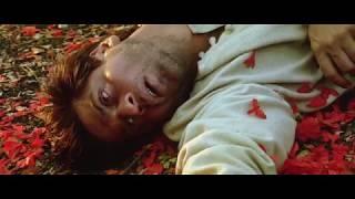 Devdas Movie End Scene   Very Emotional   Shahrukh Khan and Aishwariya Rai
