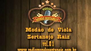 SO MODAO SERTANEJO RAIZ VOL01 divx