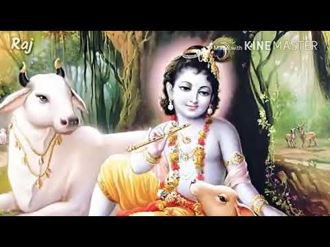 Xxx Mp4 ગુજરાતી સ્થિતિ વિડીયા 3gp Sex