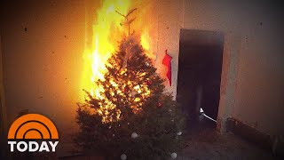 Rossen Reports: How To Prevent A Christmas Tree Fire | TODAY