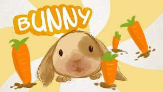 Happy Nappy Bunny and Carrot Dance