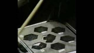 SAGA 1981