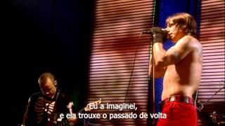Red Hot Chili Peppers Live at Slane Castle (Legendado PT-BR)