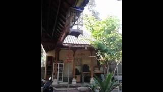 Cucak Kombo Gacor Mantap Download Mp3 Mp4 3GP HD Video