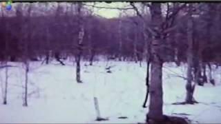 Gable Film Full 1