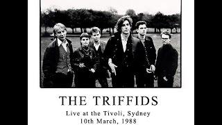 The Triffids - Live at the Tivoli. 10.3.88. Part 2
