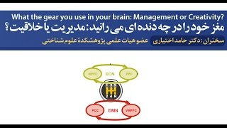 Brain Gears! How to Use the Right One?
