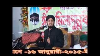 beautiful new bangla waz 2016,allama sayed mokarram bari, darbare baria sharif-01879381046