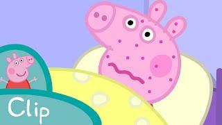 Peppa Pig - Docteur Brown Bear (clip)