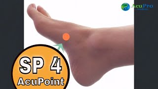 SP 4 Acupuncture Point