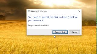 Repair A Corrupted SD Card or USB Flash Drive (in English)