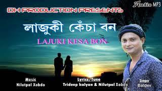 Lajuki Kesa Bon | Baldev | Official Audio