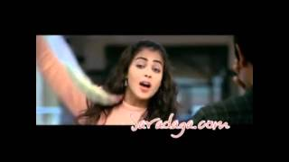 Salman Khan's & South Stars Celebrity Cricket League Theme Song