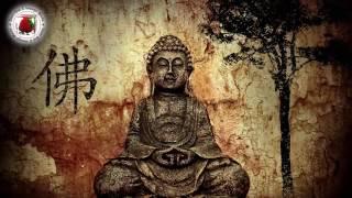 Buddha bar - paris By DJ Ravin