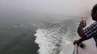 kirtonkhola river a otithi pakhi
