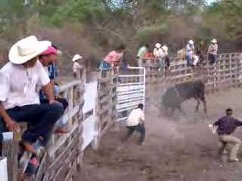 Caida de jinete en el toro El Cihualteco
