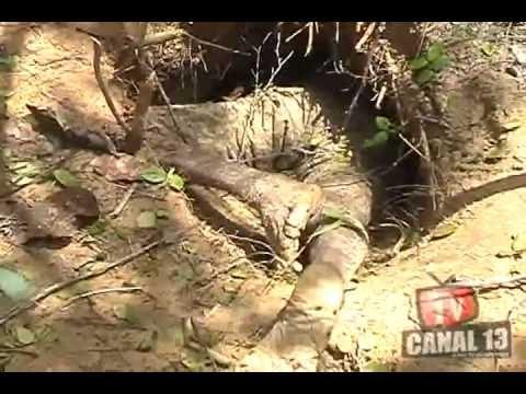 Homem sai para caçar tatu e morre dentro de buraco na zona rural de Teresina
