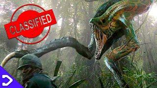 ALL The TERRIFYING Monsters Of Skull Island! - Godzilla VS Kong LORE