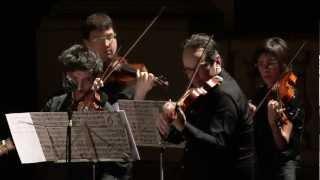 Purcell/Chacconne - Accademia degli Astrusi/Ferri