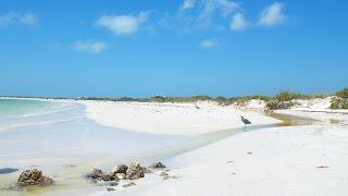 Field Spectroscopy for Environmental Analyisis - Honeymoon Island, Florida