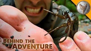 TOE-BITER! Giant Water Bug!