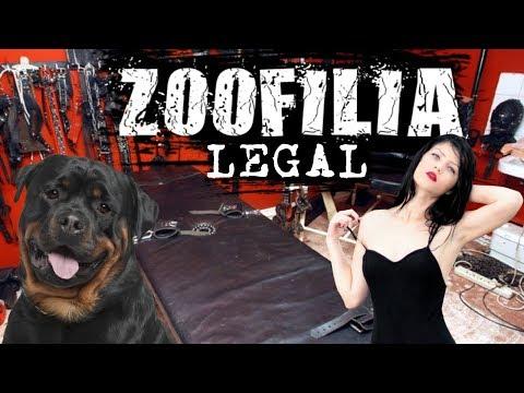 TOP: 10 Países Donde La Z00F1L1A Es Legal  El puesto #3 te perturbara  - Mundo Gore