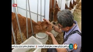 Iran Avicenna Research Institute, BioTechnology using for Animal cloning پورسينا شبيه سازي حيوانات