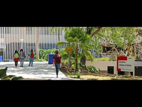 El Instituto de Cultura y la UPR ofrecen internados para universitarios