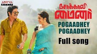 Pogaadhey Pogaadhey Full Song |Sokkali Mainor Tamil Dubbed|Nagarjuna,Ramya Krishnan,Lavanya